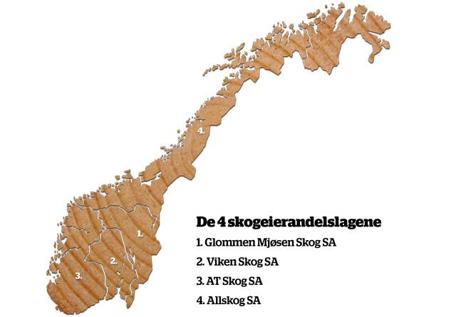 Inndeling som viser de fire skogeierlagene