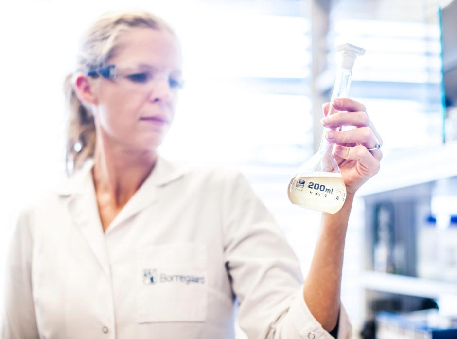 Borregaard er et godt eksempel på produksjon av  produkter fra tre som erstatter oljebaserte alternativer og beveger dermed verden fra sort til grønt karbon. Foto: Borregaard.