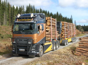 Størst andel 60 tonn i Buskerud