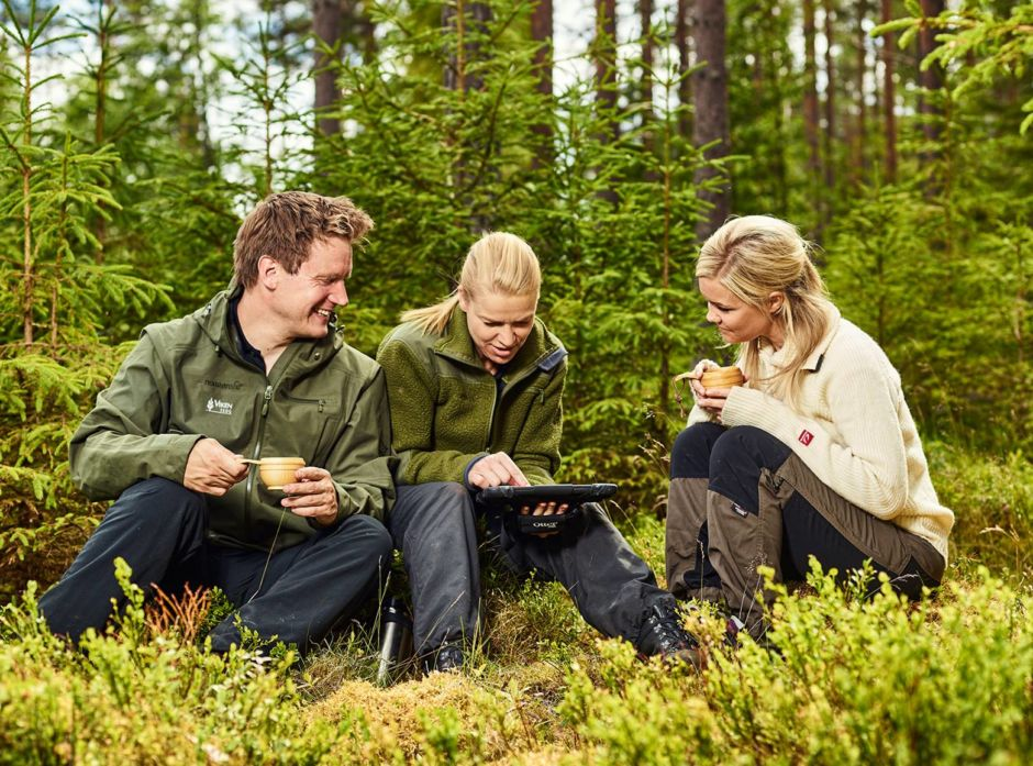 Skogkvelder i Viken Skog_illustrasjonsfoto