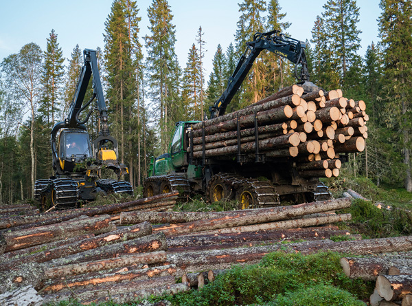 SB Skog har vunnet anbudene om skogsdrift i Statskog.