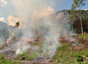 Fortsatt ekstremt stor skogbrannfare