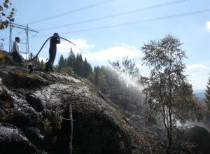 Ekstrem tørke lammer skognæringen