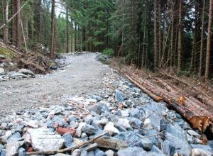 Øker satsingen på vei og miljøtiltak i skogen