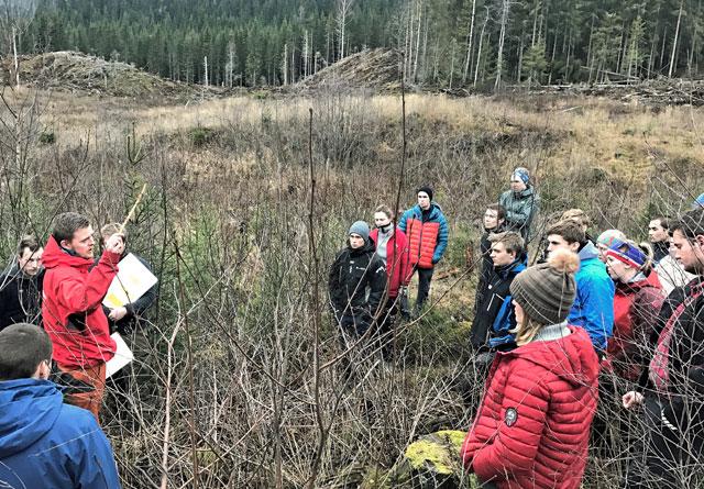Kursdeltakerne fra Bygdeungdomslaget fikk blant annet lære om planting, ungskogpleie og tynning under helgen på Honne.