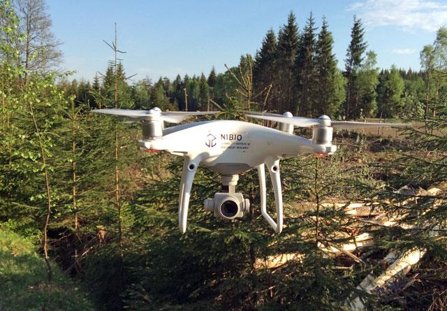 Droner har mange anvendelsesområder i skogbruket, og kan også brukes til kontroll av foryngelsesfelt.
