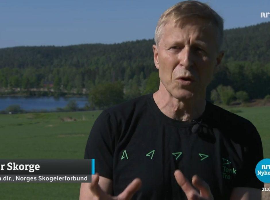 Per Skorge på NRK Nyheter 21. juni 2021, skjermdump